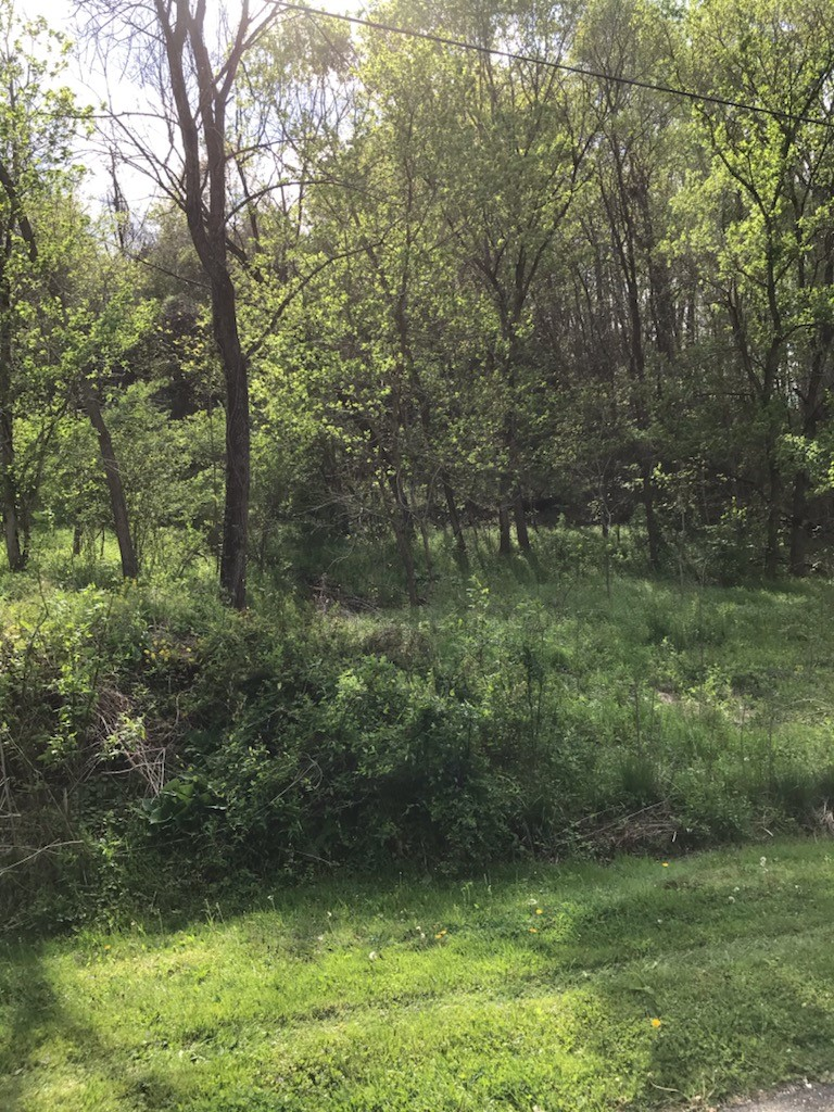 0 Dearing Rd., Jackson, OH 45640